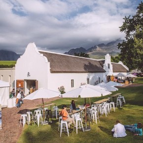 The Lion and The Lady Visits KAMERSStellenbosch
